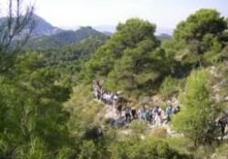 Decreto 22/2014 de la Comunidad Valenciana sobre los costes movilización ante una emergencia
