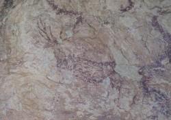 Visita a las pinturas rupestres de La Sarga (Alcoy)