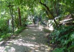 Jardín Botánico Histórico La Concepción (Málaga) (Parte 2 de 4). Descripción de la parte histórica del jardín.