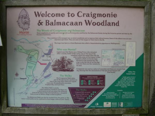 Balmacaan Woods en el Lago Ness_600x450