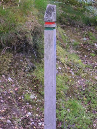 Marca de recorridos en Balmacaan Woods_375x500