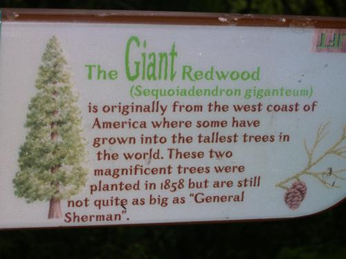 Señales descriptivas (detalle) en Balmacaan Woods_500x375