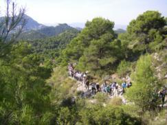 Xorre de Catí con Diputación (Octubre 2010) 009_243x182