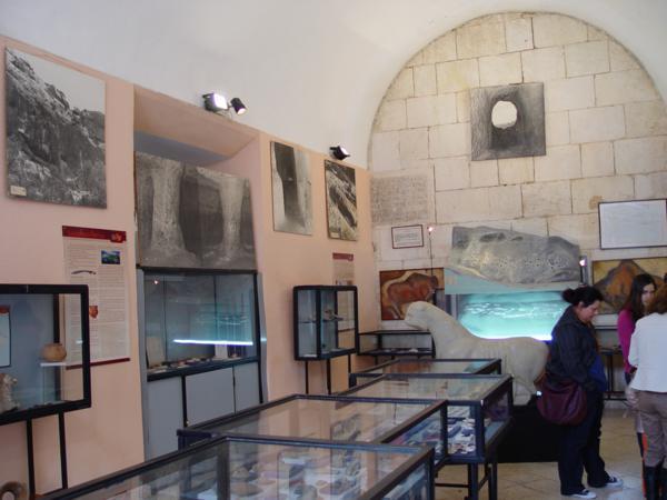Museo Arqueológico Municipal Vicent Casanova1_600x450
