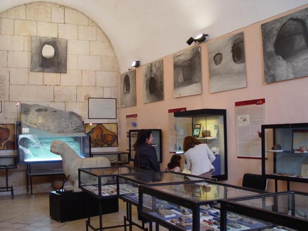 Museo Arqueológico Municipal Vicent Casanova2_600x450