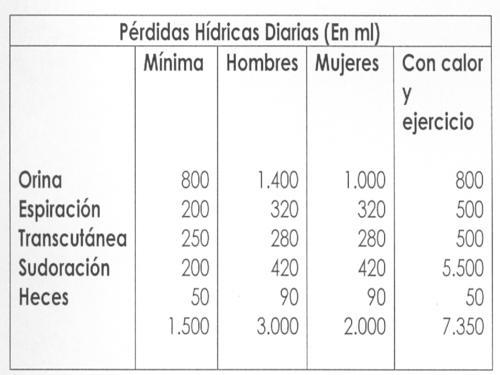 Pérdidas Hídicas Diarias (En ml)_500x375