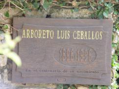 Cartel de Arboreto Luis Ceballos_243x182