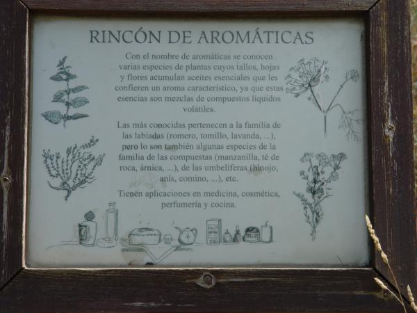 Cartel del Rincón de Aromáticas_600x450