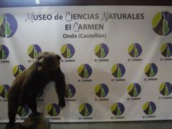 Museo de Ciencias Naturales El Carmen (Onda, Castellón)_243x182