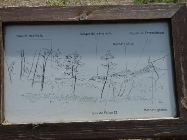 Vista panorámica de los alrededores del Arboreto Luis Ceballos. Cartel_600x450