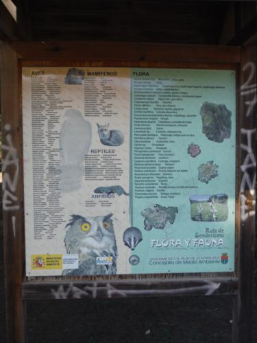 Cartel de la Flora y Fauna de la Ruta de Senderismo Río Seco_375x500