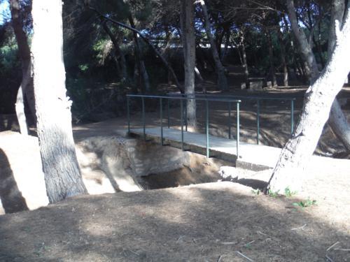 Puente sobre el río seco en el Área natural Mil Palmeras_500x375