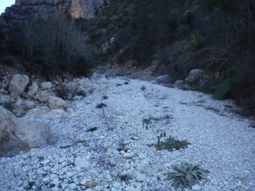 Lecho del río Girona_500x375