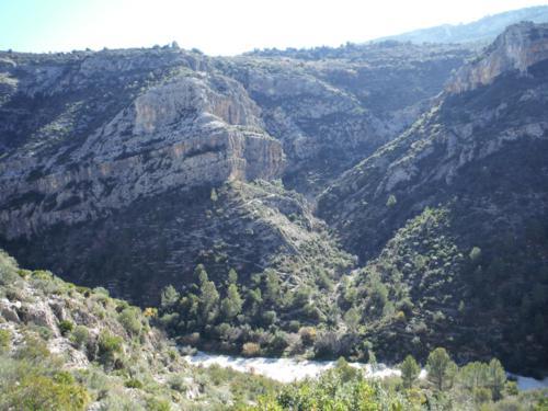 Senda realizada para llegar al río Girona desde la ladera contraria_500x375