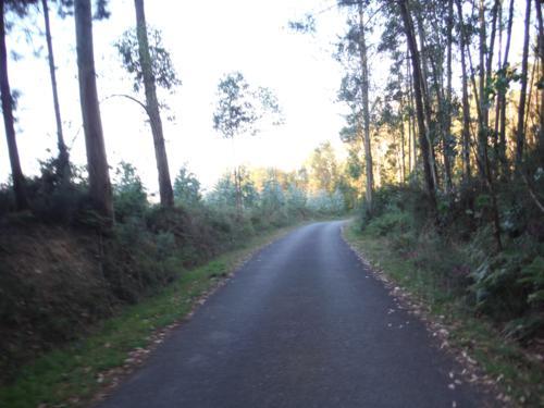 Camino de Betanzos a Xanrozo bien señalizado y por asfalto. De Betanzos a Hospital de Bruma