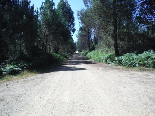 Camino que no se termina a 4 kilómetros de Sigüeiro. De Hospital de Bruma a Sigüeiro
