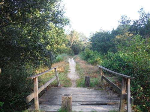 Pequeño puente de madera sobre la senda. De Pontedeume a Betanzos