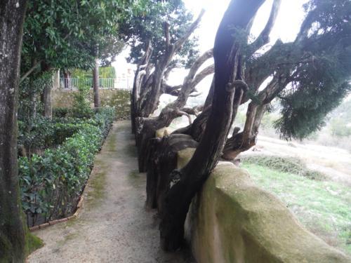 Jardín de Santos (Penáguila) Influencias y descripción del jardín