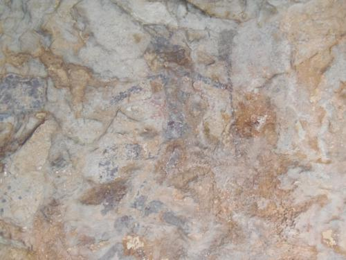 pinturas rupestres de La Sarga (Alcoy)