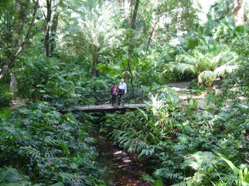 Puente de la Glorieta de Amalia Heredia_500x375